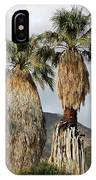 Washingtonia Filifera Fan Palms IPhone Case