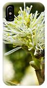Wasp On Fothergilla 1 IPhone Case