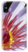Water Lily Soaking Up The Sun Light IPhone Case