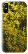 Water Reflection Abstract Autumn 1 F IPhone Case