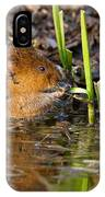 Water Vole At Dusk IPhone Case