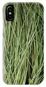 Weeping Sedge (carex Oshimensis) IPhone Case
