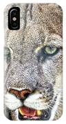 Western Mountain Lion IPhone Case