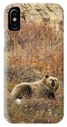 What A Beautiful Day IPhone Case