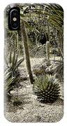Where The Cacti Grow IPhone Case