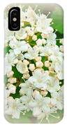 White And Cream Hydrangea Blossoms IPhone Case