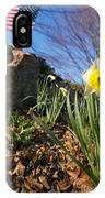 White And Yellow Daffodil Flower IPhone Case