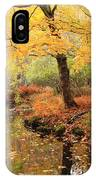White Ash And Stream In Autumn IPhone Case