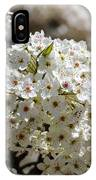 White Flowering Tree Floral IPhone Case
