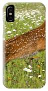 White Tailed Deer Fawn In Field Of IPhone Case
