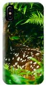 Whitetail Fawn And Ferns IPhone Case