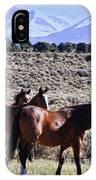 Wild Bunch IPhone Case