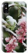Wild Currant Blossoms Ribes Sanguineum IPhone Case
