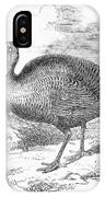 Wild Turkey, 1853 IPhone Case