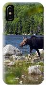Window To The Moose IPhone Case