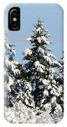 Winter 0005 IPhone Case