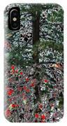 Winter Color IPhone Case