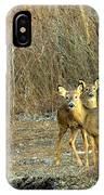 Winter Does IPhone Case