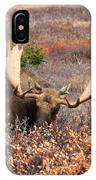 Winter Feed IPhone Case