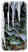 Winter Still IPhone Case