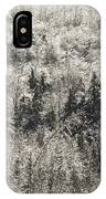 Winter Trees Covered In Ice IPhone Case