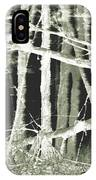 Winter Trees With Chalk IPhone Case