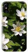 Wood Anemone IPhone Case