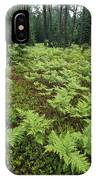 Woodland View In A Pine Forest IPhone Case