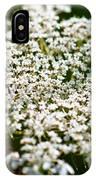 Yarrow Plant Flower Head  IPhone Case