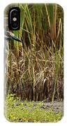 Yellow-crowned Night-heron IPhone Case