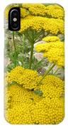 Yellow Yarrow IPhone Case