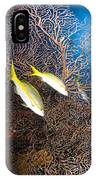 Yellowtail Snappers And Sea Fan, Belize IPhone Case
