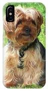 Yorkshire Terrier In Park IPhone Case