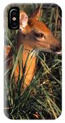 Young Deer Laying In Grass IPhone Case