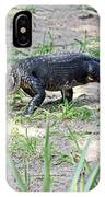 Young Gator On The Move IPhone Case