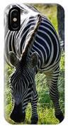 Zebra At Close Range IPhone X Case