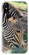 Zebra At Lunch IPhone Case