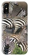 Zebra At Waterhole IPhone Case