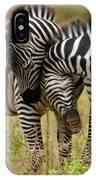 Zebra Hug IPhone Case