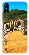 Zebra In The Grassland  IPhone Case