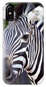 Zebra Symmetry  IPhone Case