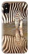 Zebra Times Two IPhone Case