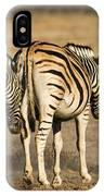 Zebras Three IPhone Case