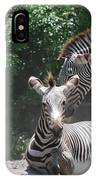 Zerbas IPhone Case