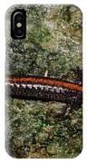 Zig-zag Salamander IPhone Case