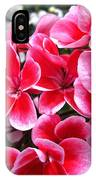 Zonal Geranium Named Candy Fantasy Kiss IPhone Case