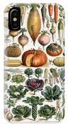 Illustration Of Vegetable Varieties IPhone Case