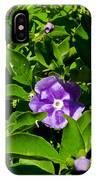 Purple Flowers In Pilgrim Place In Claremont-california IPhone Case