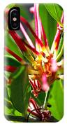 Red Spider Flower Close Up IPhone Case