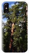 Yosemite Sequia IPhone X Case